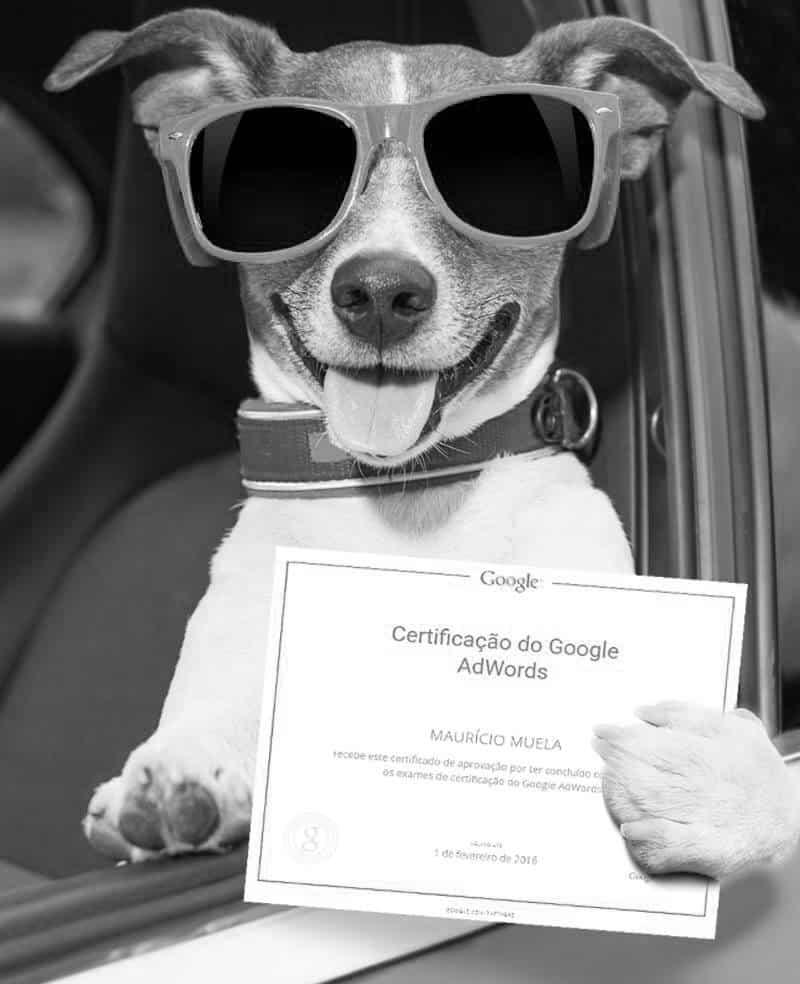 Certificação 2016 Google Ads